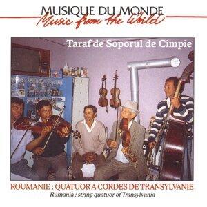 Taraf De Soporul De Cîmpie 歌手頭像