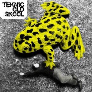 Teknic Old Skool 歌手頭像
