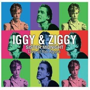Iggy Pop, David Bowie 歌手頭像