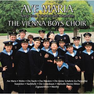 The Vienna Boys Choir 歌手頭像