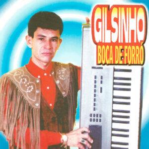 Gilsinho Boca de Forró 歌手頭像