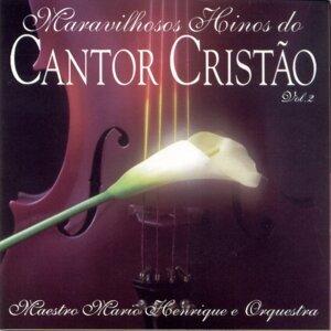 Maestro Mario Henrique e Orquestra 歌手頭像
