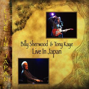 Billy Sherwood, Tony Kaye 歌手頭像