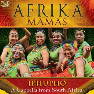 Afrika Mamas 歌手頭像