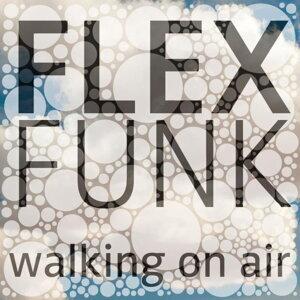 Flex Funk 歌手頭像