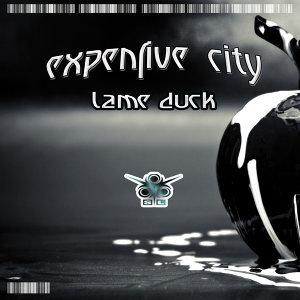 Expensive City 歌手頭像