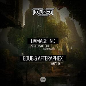 Damage inc, eDub, Afteraphex & Eshkoshka 歌手頭像
