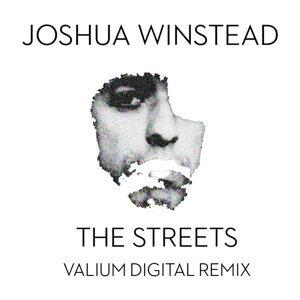 Joshua Winstead 歌手頭像