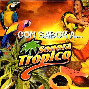Sonora Trópico 歌手頭像