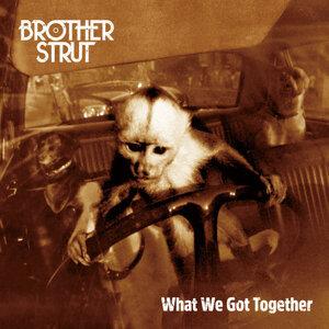Brother Strut 歌手頭像