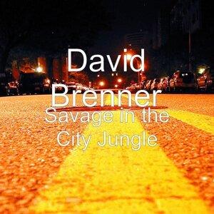 David Brenner 歌手頭像