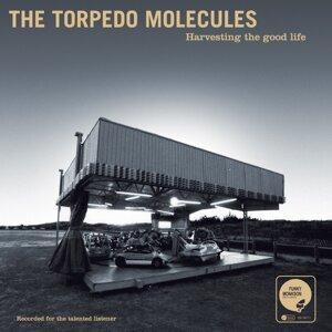 The Torpedo Molecules 歌手頭像