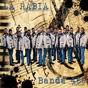 Banda 466 歌手頭像