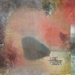 Lightsucker 歌手頭像