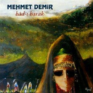 Mehmet Demir 歌手頭像