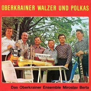 Ensemble Miroslav Berta 歌手頭像