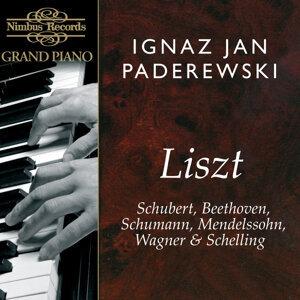 Ignaz Jan Paderewski 歌手頭像