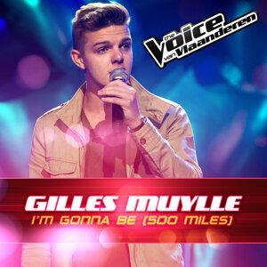 Gilles Muylle 歌手頭像