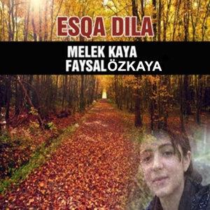 Melek Kaya, Faysal Özkaya 歌手頭像