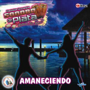 Marimba Orquesta Sonora de Plata 歌手頭像