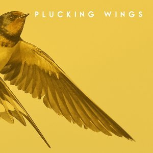 Plucking Wings 歌手頭像