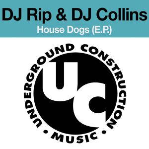 DJ Rip, DJ Josh Collins 歌手頭像