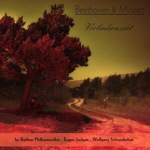 Berliner Philharmoniker, Eugen Jochum, Wolfgang Schneiderhan 歌手頭像