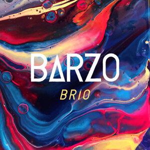 Barzo 歌手頭像