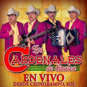 Los Cardenales De Sinaloa 歌手頭像