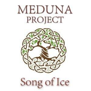 Meduna Project 歌手頭像