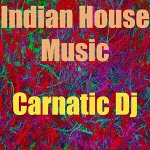 Carnatic DJ 歌手頭像