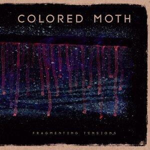 Colored Moth 歌手頭像