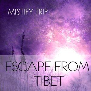 Mistify Trip 歌手頭像