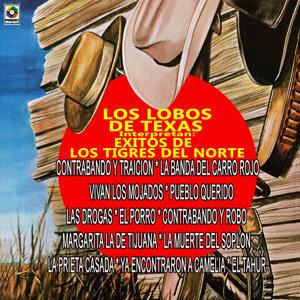 Los Lobos De Texas 歌手頭像