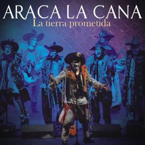 Araca la Cana 歌手頭像