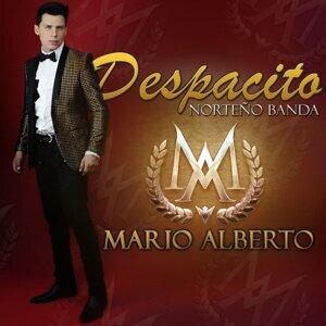 Mario Alberto 歌手頭像