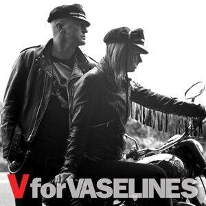 The Vaselines 歌手頭像