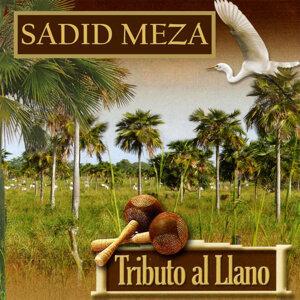Sadid Meza 歌手頭像