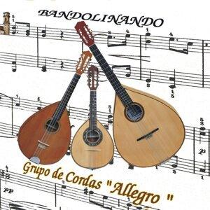 Grupo de Cordas Allegro 歌手頭像