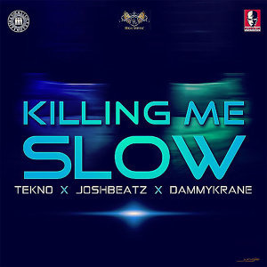 Joshbeatz feat. Tekno and Dammy Krane 歌手頭像
