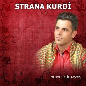 Mehmet Afif Taşmış 歌手頭像