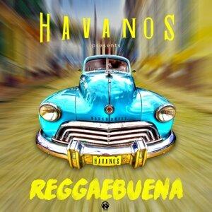 Havanos 歌手頭像