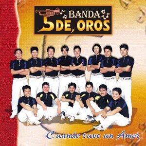 Banda 5 De Oros 歌手頭像