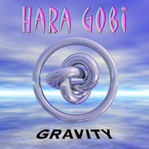 Hara Gobi