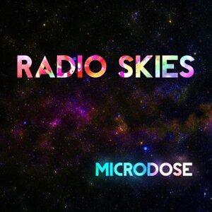Radio Skies 歌手頭像