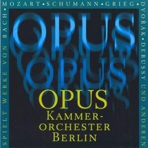 Opus Kammerorchester Berlin 歌手頭像