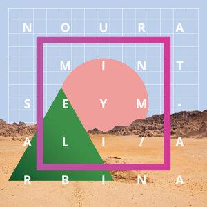 Noura Mint Seymali 歌手頭像
