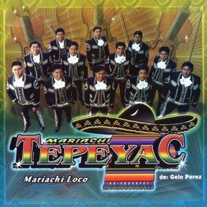 Mariachi Tepeyac De Gelo Perez 歌手頭像