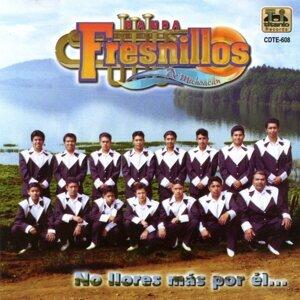 Banda Fresnillos de Michoacán 歌手頭像