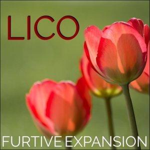 Lico (Lico) 歌手頭像